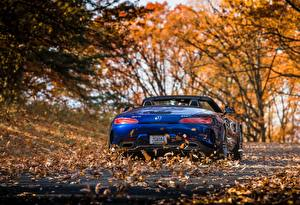 Picture Mercedes-Benz Blue Foliage Back view Roadster AMG 2018 GT C auto