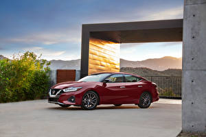 Pictures Nissan Wine color Metallic 2019 Maxima Platinum automobile