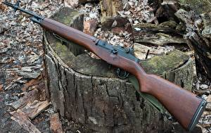 Wallpapers Rifles Closeup Springfield Armory M1A Army