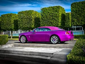 Pictures Rolls-Royce Violet Luxury 2017 Dawn in Fuxia automobile