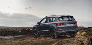 Bilder Seat Graue Sport Utility Vehicle 2018 Cupra Ateca