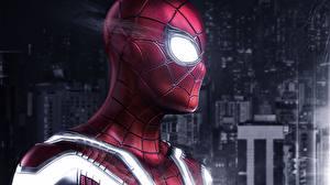 Image Spiderman hero Head Fantasy