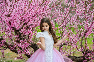 Image Spring Flowering trees Little girls Gown
