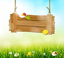 Wallpapers Spring Ladybird Matricaria Grass Template greeting card Nature