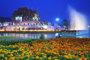 壁纸、、タイ王国、寺院、夕、マリーゴールド、池、Royal Park Rajapruek (Chiang Mai)、都市、花