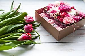 Hintergrundbilder Tulpen Rosen Macaron Blumen