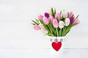 Fotos Tulpen Valentinstag Herz Blumen