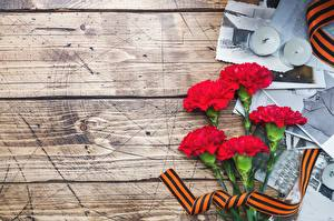 Papel de Parede Desktop Dia da Vitória 9 de maio Dianthus Tábuas de madeira Flores