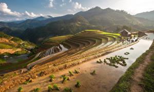 Wallpaper Vietnam Mountains Fields Mu Cang Chai