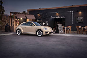 Image Volkswagen Metallic 2019 Beetle Final Edition auto