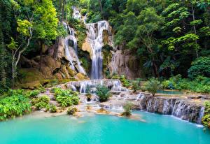 壁纸、、滝、岩石、木、Kouangxi Water Fall Laos、
