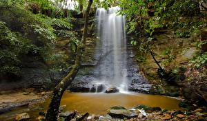 Fotos Australien Wasserfall Steine Felsen Baumstamm Laubmoose Morton National Park Natur