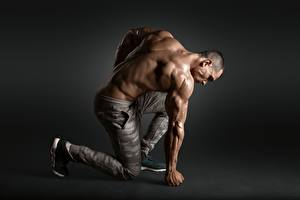 Picture Bodybuilding Man Human back Muscle
