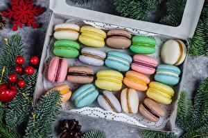 Hintergrundbilder Kekse Macaron Mehrfarbige