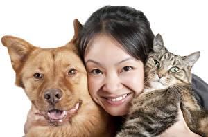 Fotos Hund Hauskatze Weißer hintergrund Brünette Starren Gesicht Tiere Mädchens