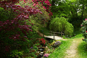Wallpapers England Gardens Bridges Streams Shrubs Branches Ramster Gardens Surrey