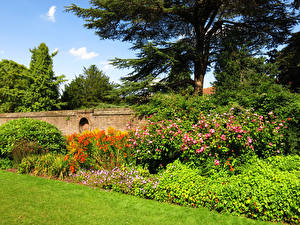 Picture England Parks London Bush Trees Grass York House Gardens