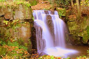 Fotos England Wasserfall Felsen Laubmoose Lower Lumsdale Matlock Derbyshire Natur