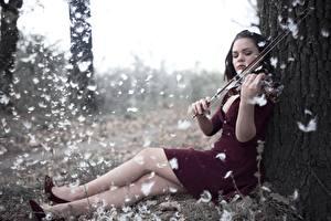 壁纸,,羽毛,小提琴,腿,坐,连衣裙,女孩,