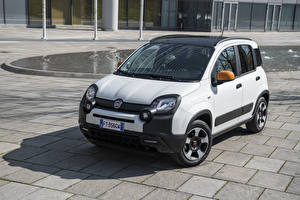 Wallpapers Fiat White 2019 Panda connected by Wind