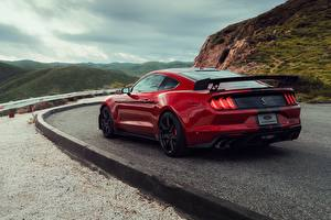 Photo Ford Red Back view Mustang Shelby GT500 2019 Cars
