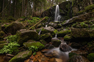 Wallpapers France Stones Waterfalls Forests Cliff Moss Cascade de Merelle Nature