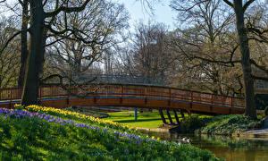 Fondos de Pantalla Alemania Primavera Parque Puentes Ríos árboles Karlsruhe