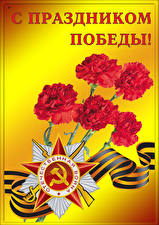 Papel de Parede Desktop Feriados Dia da Vitória 9 de maio Dianthus Estrela da decoração Fita Russo