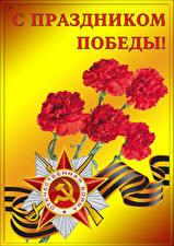 Bilder Feiertage Tag des Sieges 9 Mai Nelken Stern-Dekoration Band Russische