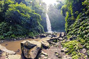 Image Indonesia Tropics Waterfalls Stones Crag Shrubs Bali Nature
