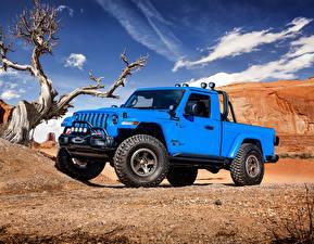 Fotos Jeep Hellblau Pick-up 2019 J6 Autos