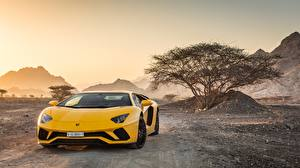 Photo Lamborghini Front Yellow 2018 Aventador S automobile