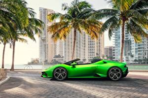 Fotos Lamborghini Seitlich Roadster Grün Spyder Evo Huracan Autos