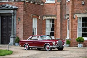 Bilder Mercedes-Benz Antik Bordeauxrot Coupe 1959-65 220 SEb Coupe Autos