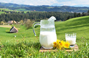 Wallpaper Milk Taraxacum Meadow Pitcher Highball glass Grass Food