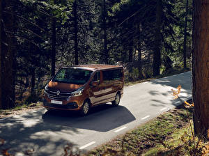 Picture Renault Metallic Brown 2019 Trafic Minibus LWB Worldwide automobile