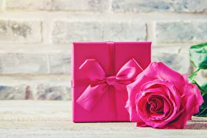 Picture Roses Pink color Gifts Bowknot Flowers