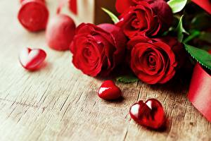 Bilder Rosen Valentinstag Rot Herz Blumen