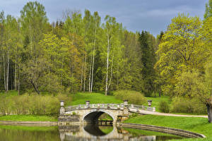 Fondos de Pantalla Rusia San Petersburgo Parque Ríos Puentes árboles Pavlovsk