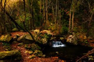 Hintergrundbilder Spanien Wälder Wasserfall Steine Herbst Bäume Laubmoose Vidra Catalonia