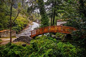 Fotos Spanien Parks Fluss Brücken Bäume Barro Galicia Natur