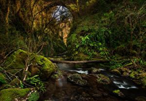Hintergrundbilder Spanien Flusse Steine Canyon Laubmoose El Sallent Catalonia