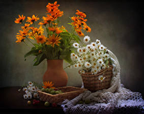 Fotos Stillleben Kamillen Gazania Stachelbeere Vase Weidenkorb