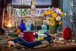 壁纸、静物画、灯油ランプ、ブーケ、カモミール、矢車菊、キンポウゲ属、貝殻、水差し、マグカップ、花、食品、