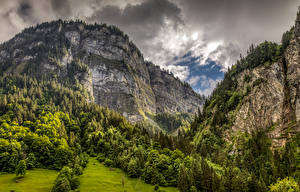 Fotos Schweiz Gebirge Wälder Alpen Felsen Natur