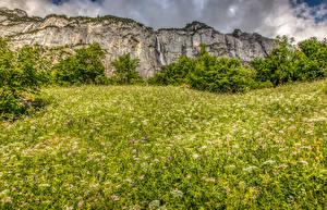 Hintergrundbilder Schweiz Gebirge Wasserfall Alpen Gras Strauch Natur