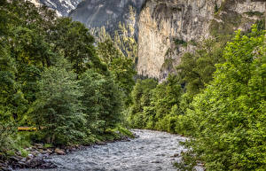 Pictures Switzerland Rivers Forests Cliff Nature