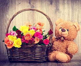 Wallpaper Teddy bear Roses Wicker basket Flowers