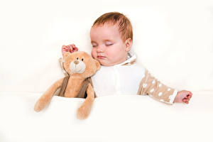 Image Teddy bear White background Infants Sleep Children