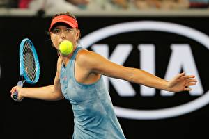 Bilder Tennis Maria Sharapova Ball Hand Australia Open 2019 Sport Mädchens